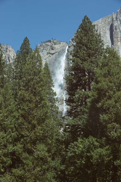 20150504-Yosemite-5D-128A1271.jpg