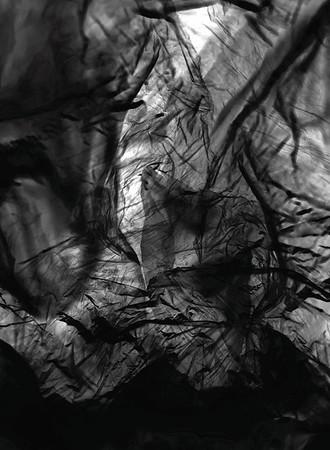 Fine Art Web