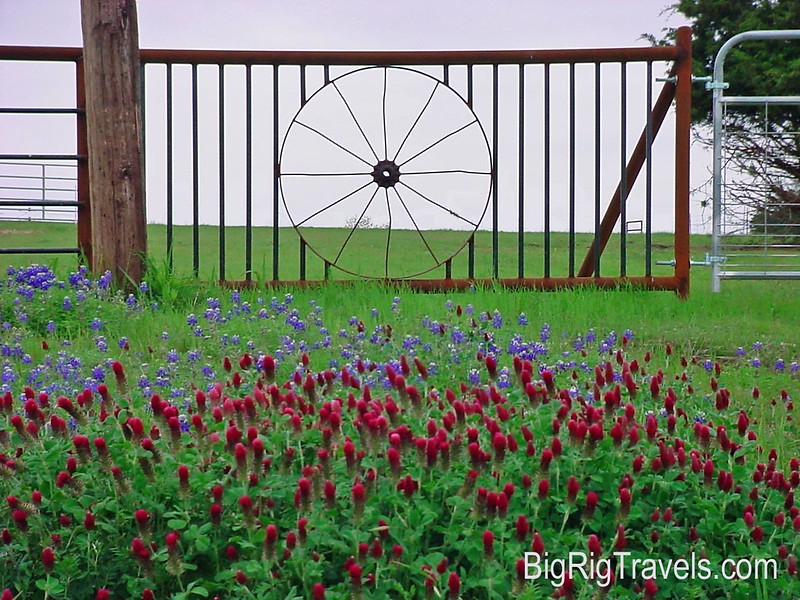 Texas Wheel Gate Wallpaper.jpg