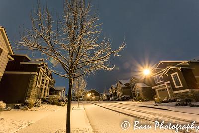 Arbor Oaks Snow