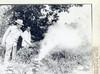Vice Squad burning marijuana 7-30-1951 Lloyd Whobrey, Fred McCool and George Martin