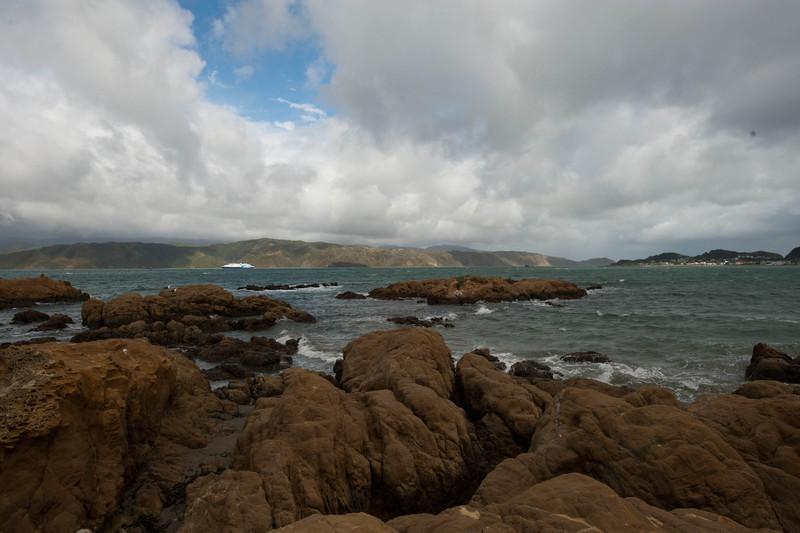 Wellington5820.jpg