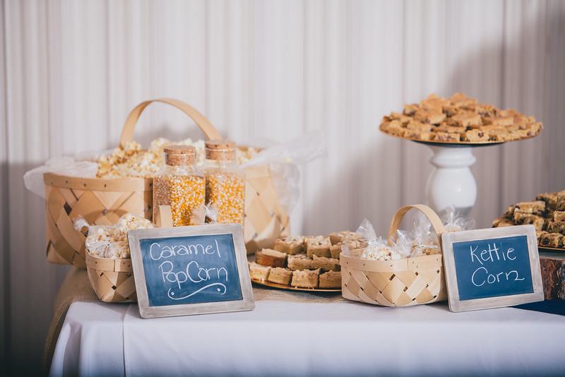 Tyler Shearer Photography Brad and Alysha Wedding Rexburg Photographer-2202.jpg