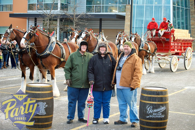 Clydesdale Portraits 143.jpg