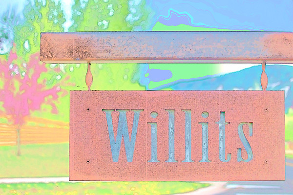 Personality of Willits