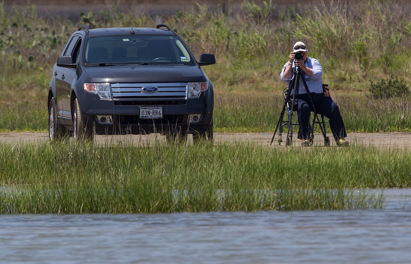 ZZReddish Egrets, Galveston, 6-7-13, 130R LTROOM, SMALL.jpg