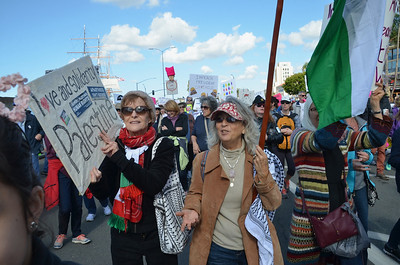 Palestine Contingent at the San Diego Women's March