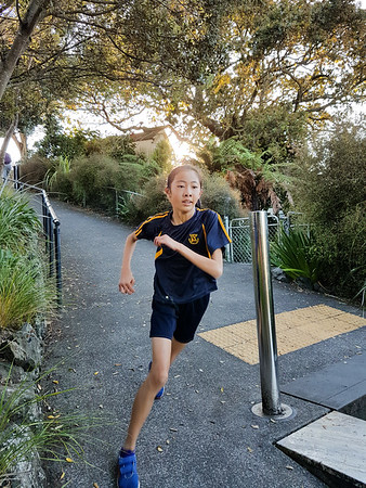 2017 Morning Fitness