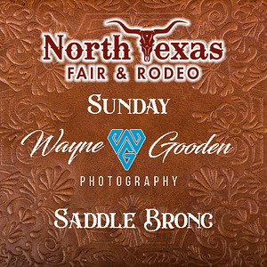 Sunday Night Saddle Bronc