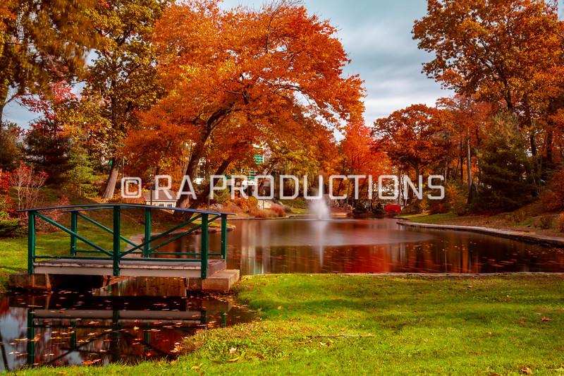 10-31-18_RAC_Fall-Scenic-Folliage-Long-Exposure-12.jpg