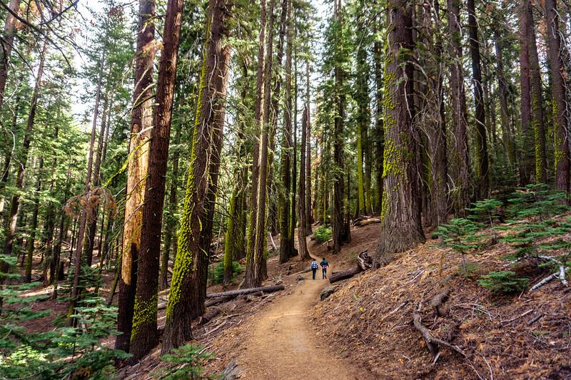 20180211_Yosemite (34 of 78).jpg