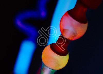 neon study 20140121