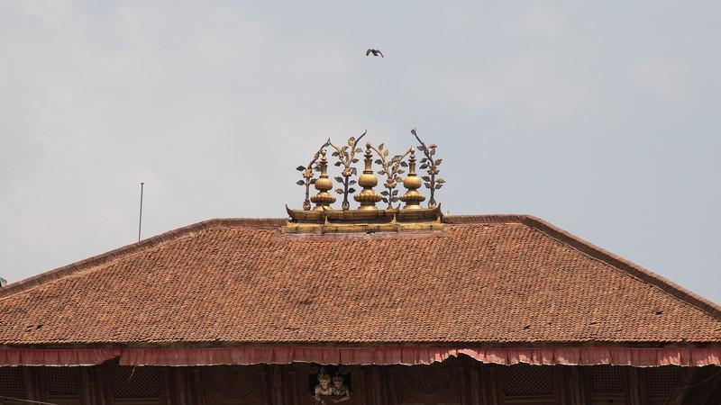 190407-112009-Nepal India-5836.jpg