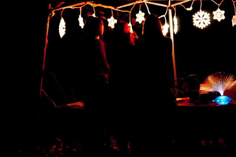 Various_Rise & Fall Festival_16.jpg
