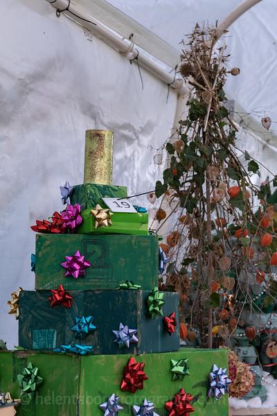 Winter Wonderland daytime-9.jpg