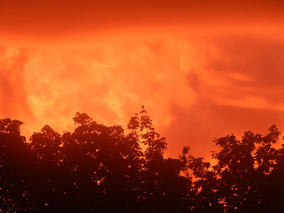 """""""Orange Above"""" (photography) by Vernon Daniels"""