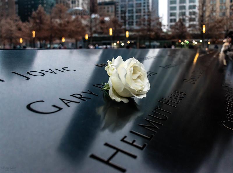 Memorial flower WTC 1.jpg