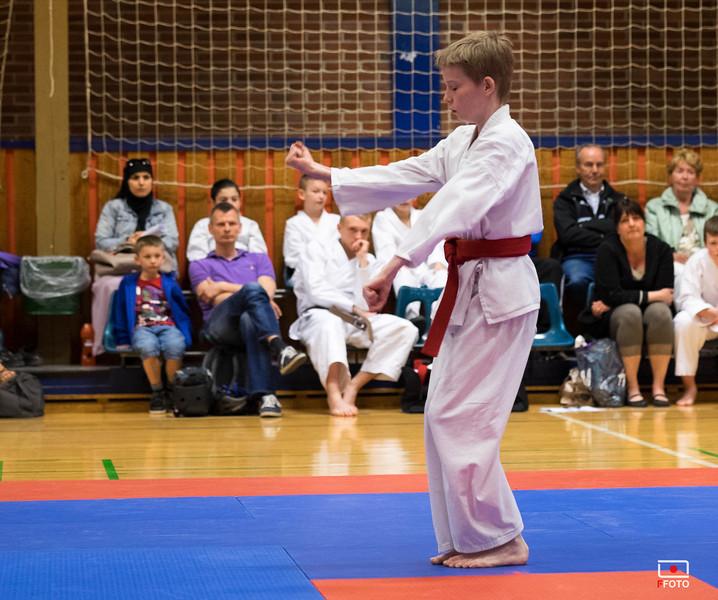 Taastrup karate klubmesterskab 2014 -DSCF7891.jpg