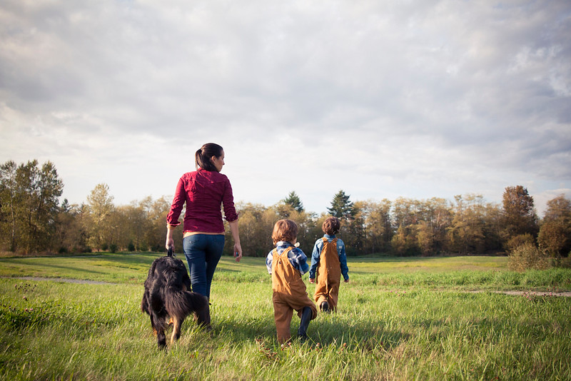 A mother walks through a grassy field with her two boys and Bernese Mountain Dog.