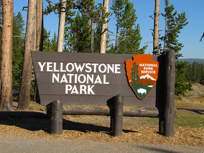 Yellowstone National Park (2010)