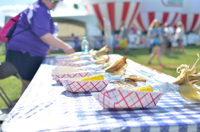 Ribfest 2016 Day 12016070179-55.jpg
