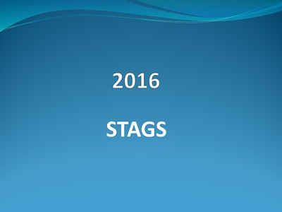 2016 STAGS