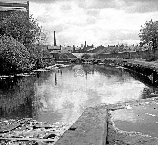 F&C Canal southeast of Ruchill Bridge.  May 1975