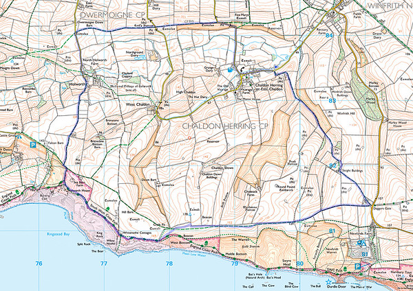 8.8 miles from Chaldon Herring on 11 March 2015