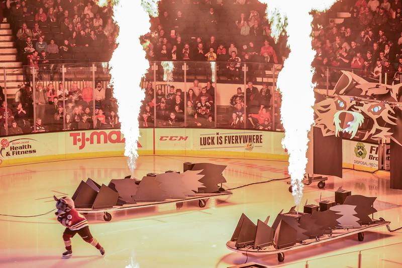 2018 Sharks at Wolves-8530.jpg