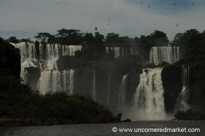 In Flight - Iguazu Falls, Argentina