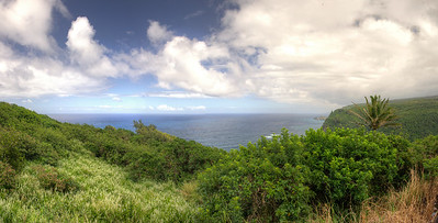 Pololu Overlook