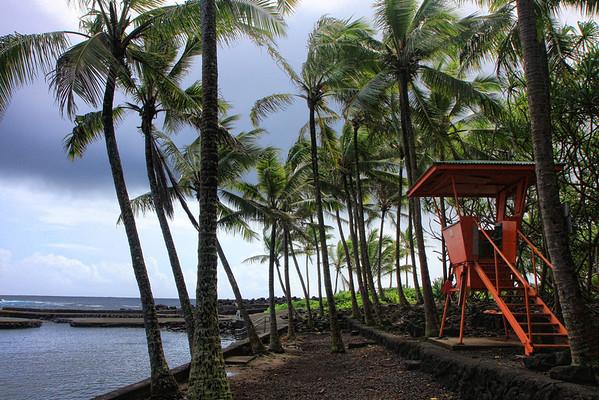 Puna Big Island Hawaii