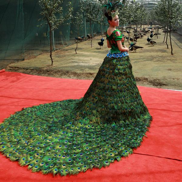 peacock-dress_1979425i.jpg