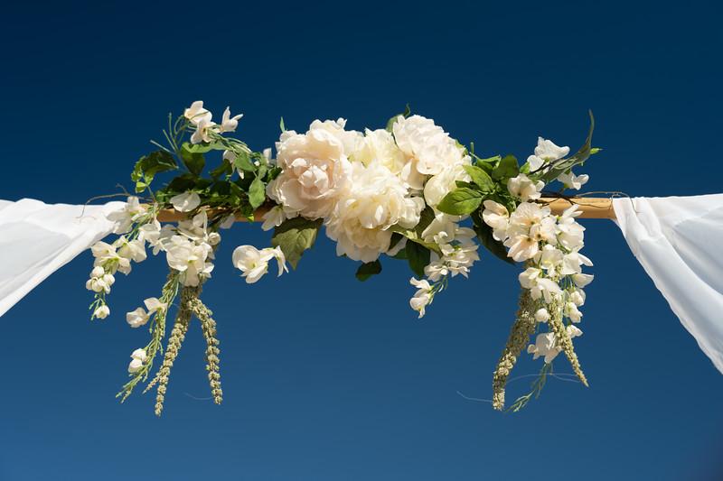 VBWC STAR 10122019 Wedding #7 (C) Robert Hamm.jpg