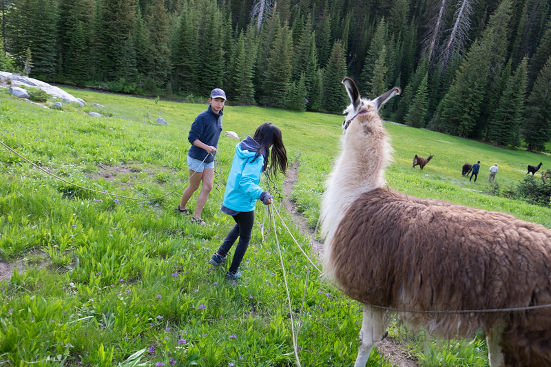 Jay Waltmunson Photography - Wallowa Llamas Reunion - 216.jpg