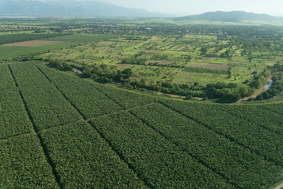 UTILA HONDURAS