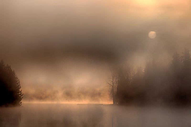 Lawrence Lake, fog 7127.jpg