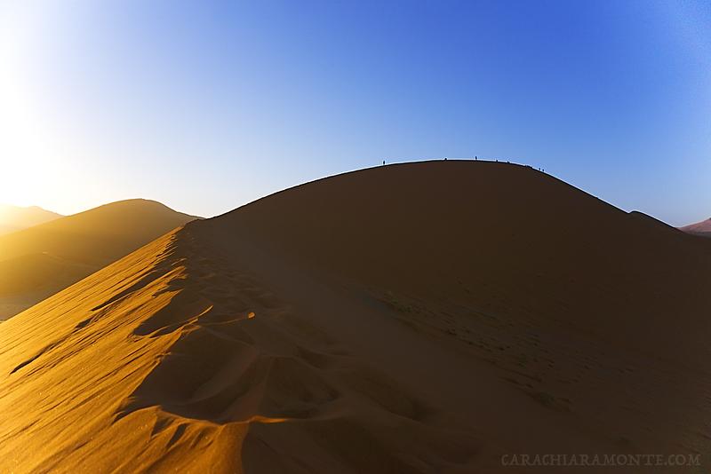 dune45wmk.png