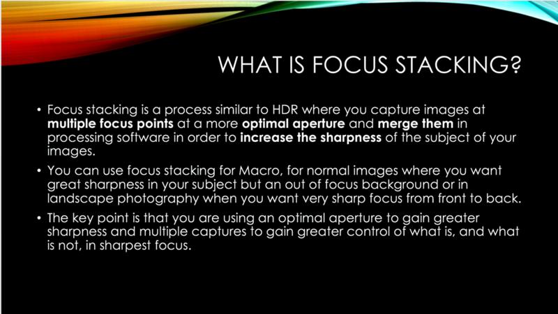 3 focus stack.jpg.png