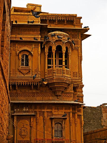 INDIA2010-0208A-512A.jpg