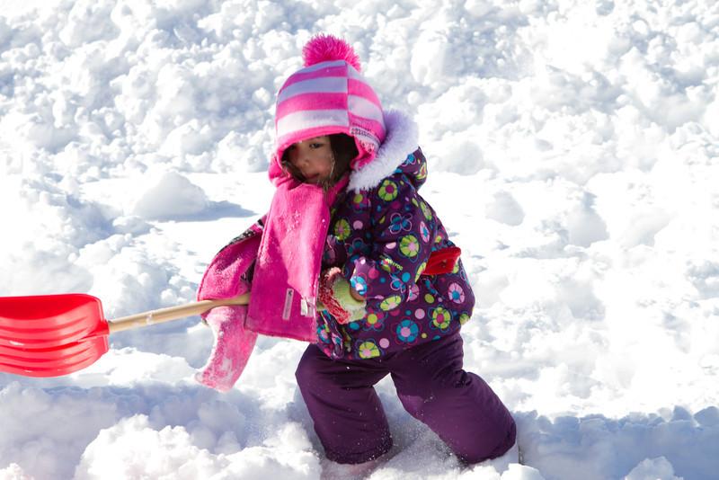 Snow2014-8.jpg