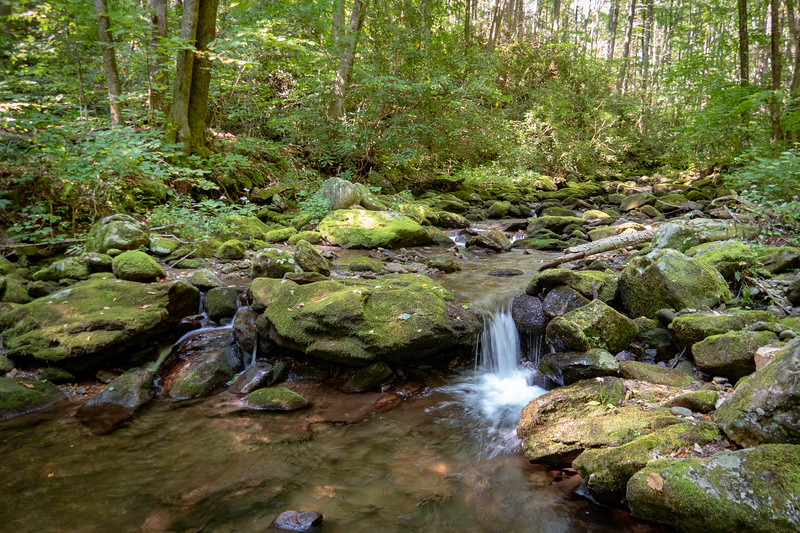 Big Creek/Laurel Mountain Upper Loop  (6.3 miles; d=10.50)