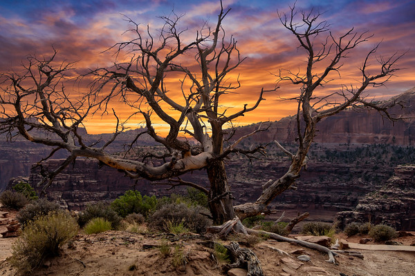 National and State Parks Around Moab, Utah