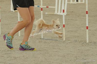 Sat P Speed jumping