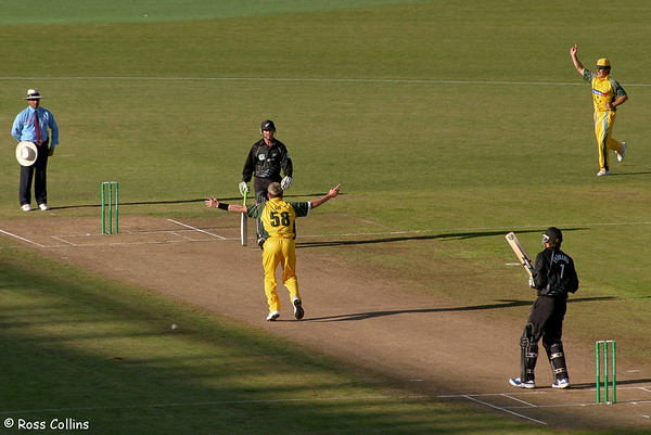 New Zealand vs Australia ODI 2005