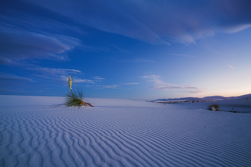 White Sands After Dark