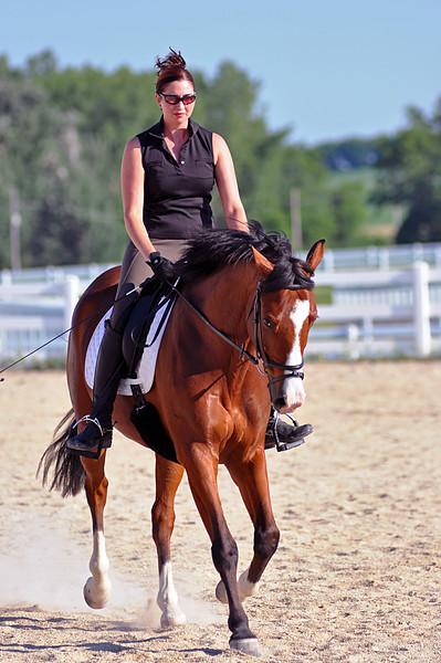Horses July 2011 173a.jpg