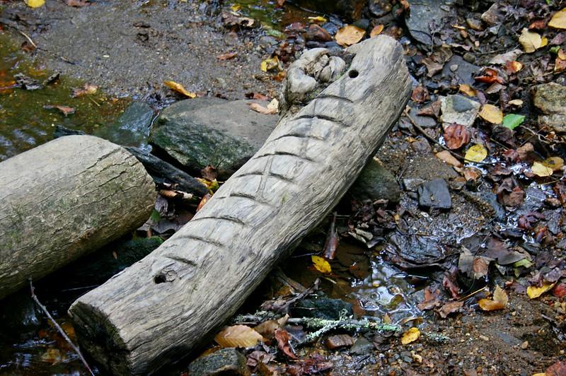 Pisgah Forest 9-30-12 85.jpg