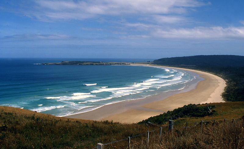 NZ_071.jpg