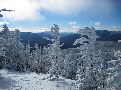 Mount Field Hike - 22 January 2011